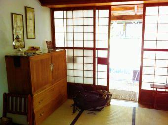 Rice paper and pexiglass sliding doors