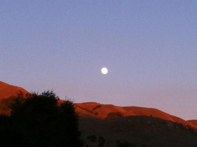 moon over marin