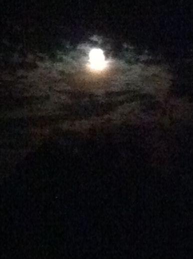 blue sturgeon moon